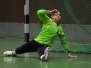 Handball Hessenmeister