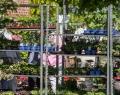 botanischer-garten-11-von-15