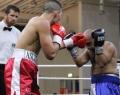 """2. Profi-Boxgala """"Fight Night"""" (16)"""