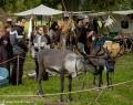 Mittelalter im Tierpark