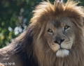 Safaripark Stukenbrock (3 von 43)