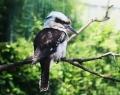 vogelpark-in-walsrode-10