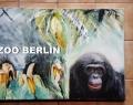 Zoo-Berlin-13