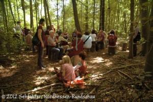 100 Kunstwerke: Der Wald (37)